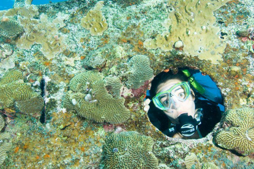 Junior Adventures in Diving