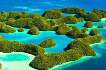 Wyspy PALAU 09-03-2021 do 22-03-2021